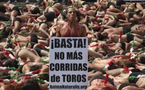 Protesta_Corrida_de_Toros-2