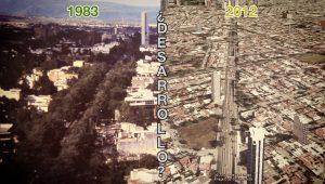 """""""Desarrollo"""" vs Arbolado"""