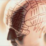 20 Fallas comunes en el pensamiento humano