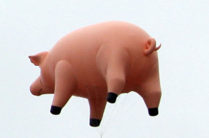 Mira ¡Un cerdo volador!